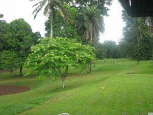 Vacation destinations in Ibadan