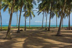 Beaches in Lagos mainland